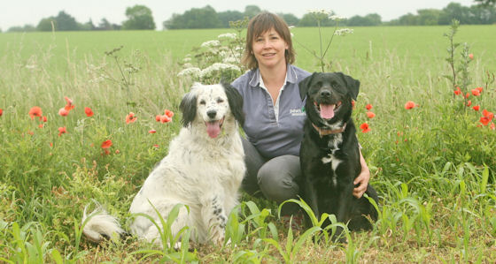 Paws Indoors Mobile Vet Rosie Smith with her dogs